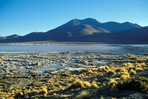 bolivia, landscape : Stock Photo