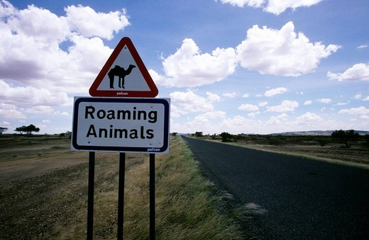 Stock Photo: 3153-812521 roaming animals, road sign, africa
