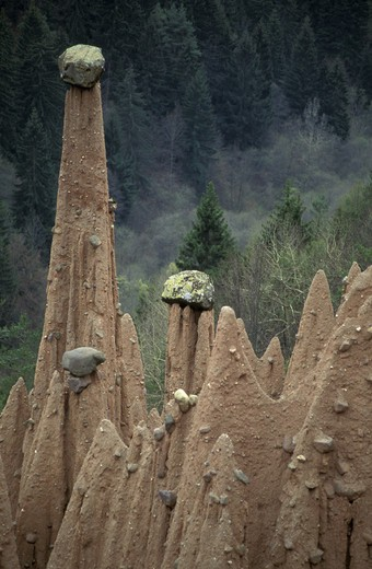earth  pyramids of renon, bolzano, italy : Stock Photo
