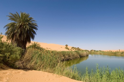 mafu lake, erg awbari, sahara desert, fezzan, libya. : Stock Photo