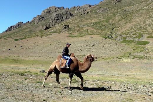 valle di yol, deserto del gobi, mongolia. Yol valley, Gobi desert, Mongolia : Stock Photo