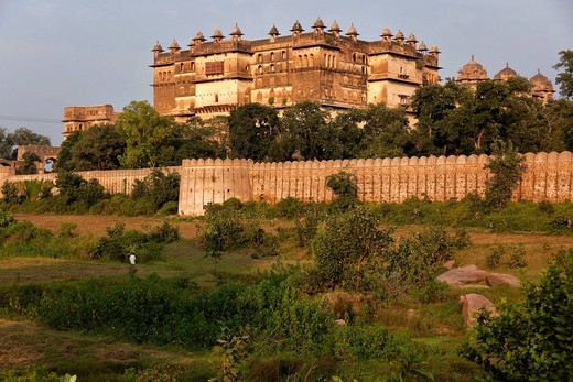 orchha, madhya pradesh, india, asia : Stock Photo