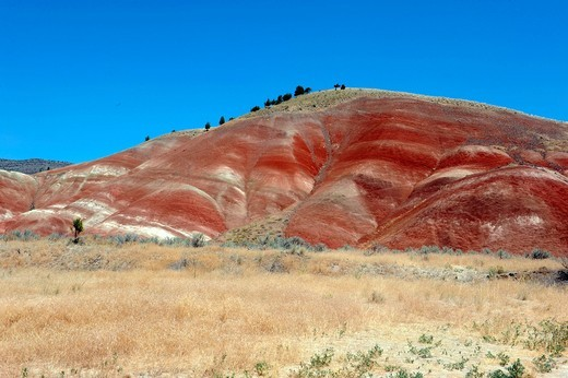 john day fossil beds national monument, oregon, usa : Stock Photo
