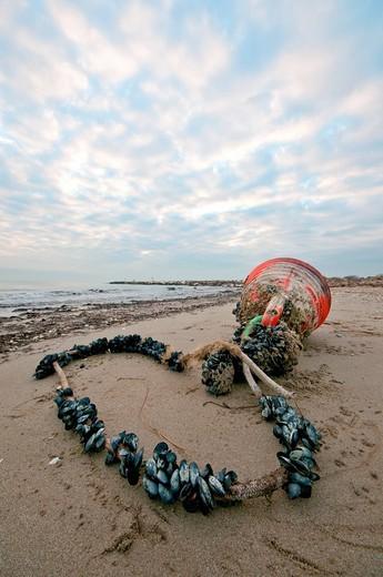 mare adriatico, boa allevamento cozze. adriatic sea, breeding mussels : Stock Photo