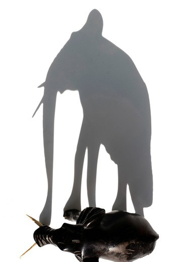 Stock Photo: 3153-844719 ombra di elefante. elephant, shadow