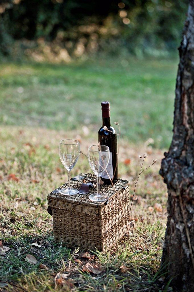 un cestino da pic nic con due calici ed una bottiglia di vino sul prato. Picnic basket with two wine glasses and a bottle of wine in the meadow : Stock Photo