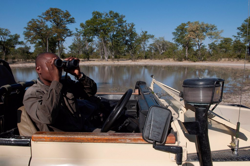 canale savuti, linyanti, botswana. Savute Channel, Linyanti, Botswana. : Stock Photo