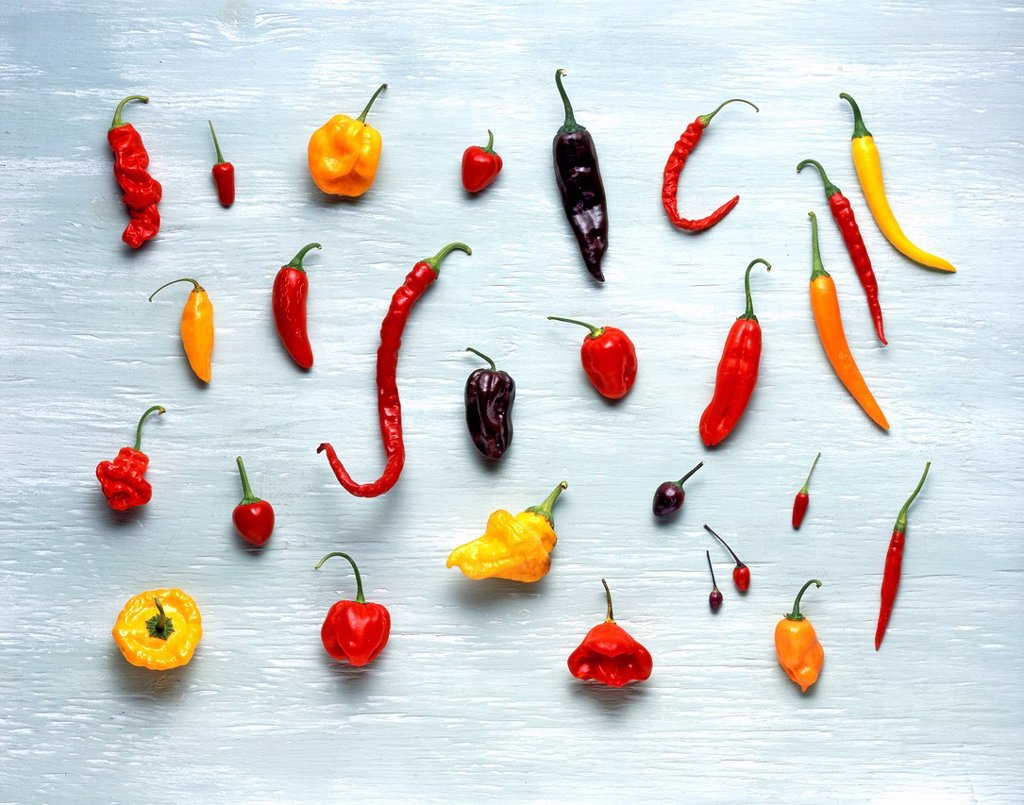 Stock Photo: 3153-856127 varietà di peperoncini. variety of peppers