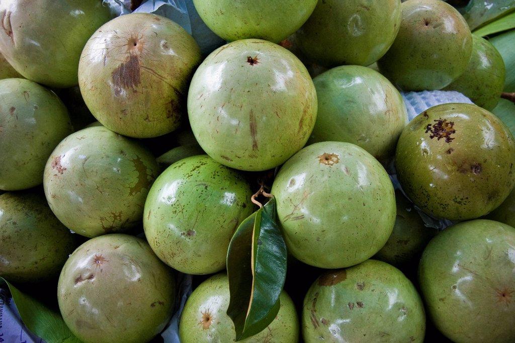 star apples, frutta tradizionale, vietnam. Star apples, Traditional fruits, Vietnam : Stock Photo
