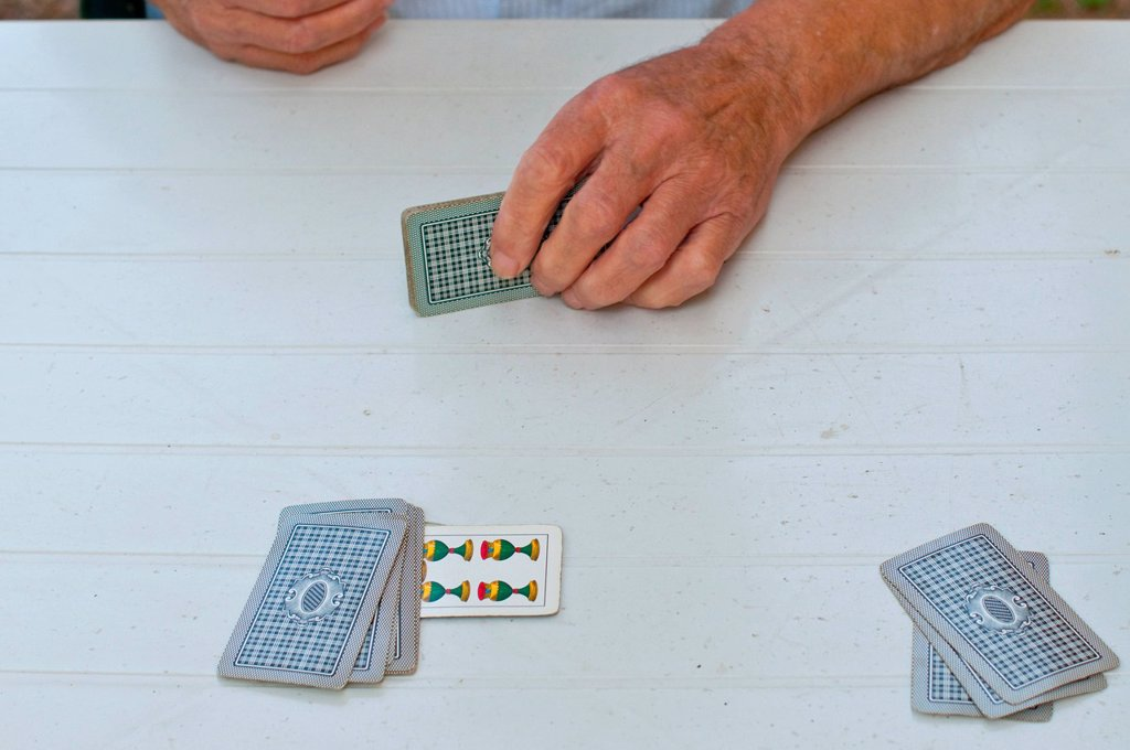 Stock Photo: 3153-861502 partita a carte. card game