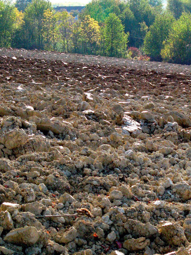 campi arati, monferrato, piemonte, italia. plowed fields, monferrato, piemonte, italy : Stock Photo