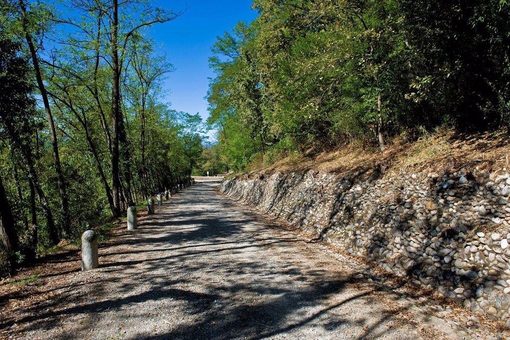 Stock Photo: 3153-871892 via gaggio, tornavento, parco del ticino lombardo, italia. Italy, Lombardy, Ticino regional park, Tornavento, Gaggio road
