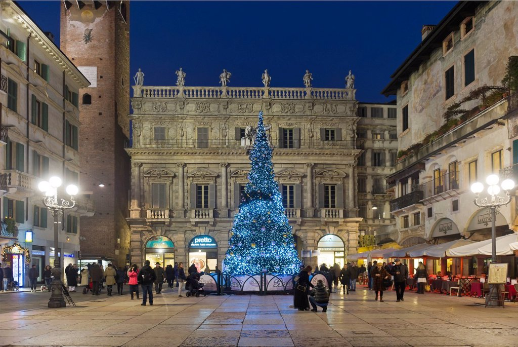 Stock Photo: 3153-872010 christmas tree in piazza bra, verona, italy
