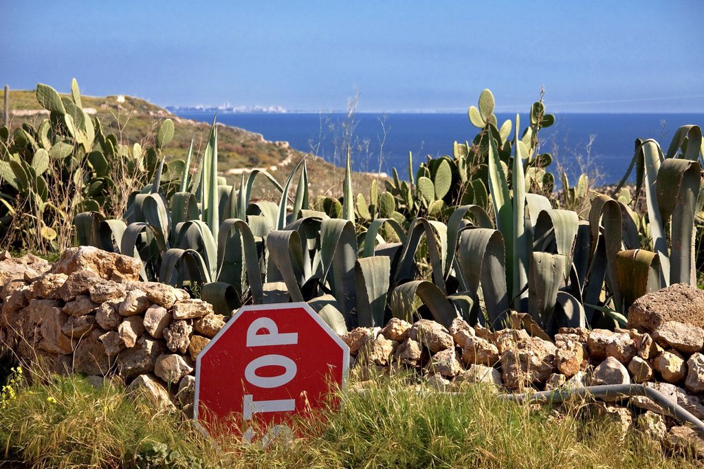 Stock Photo: 3153-876035 isola di favignana, egadi, sicilia