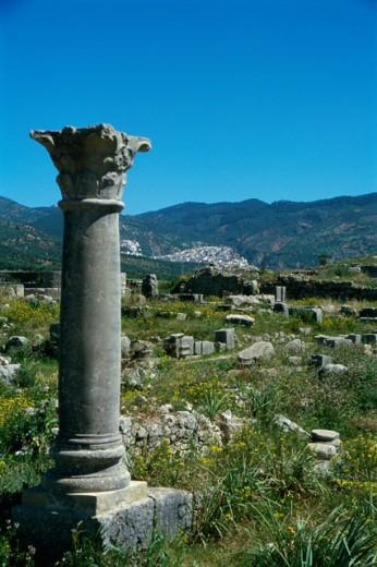 Stock Photo: 3198-223 Roman Ruins, Volubilis, Morocco