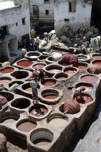 Tannery Fez Morocco : Stock Photo