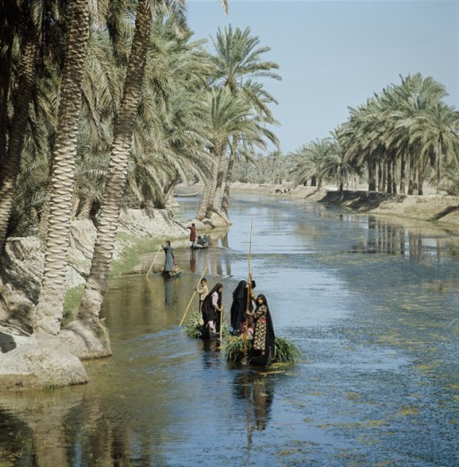 Stock Photo: 3208-397462 Tigris-Euphrates Rivers