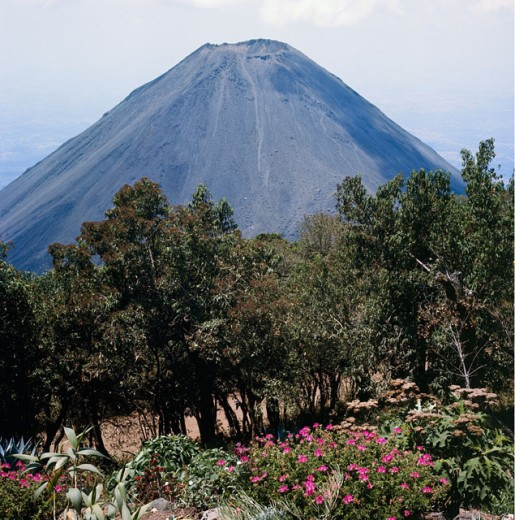 Stock Photo: 3800-499109 Izalco Volcano