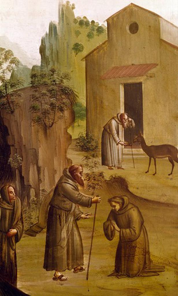 Saint Jerome, by Bartolomeo di Giovanni, detail, 15th Century : Stock Photo