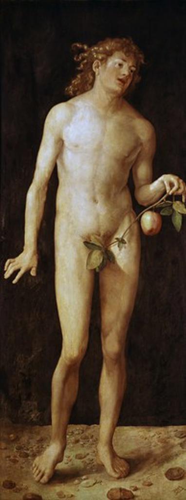 Stock Photo: 3815-398876 Adam 1507 Albrecht Durer (1471-1528 German) Oil On Wood Panel Museo del Prado, Madrid, Spain
