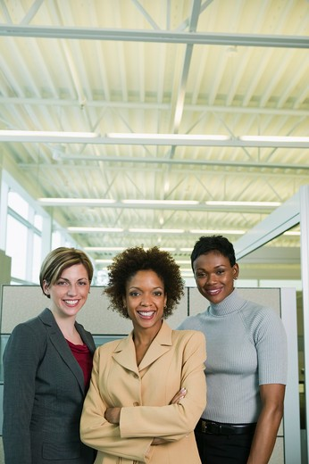Business executives posing in an office : Stock Photo