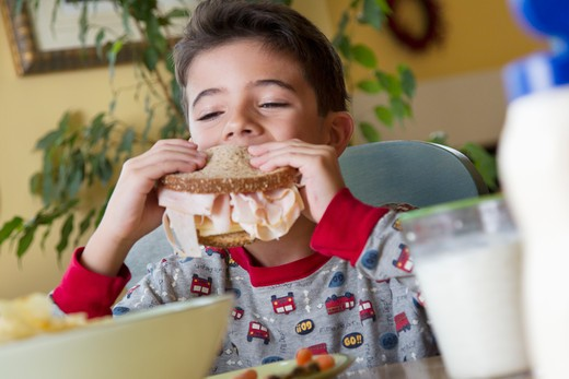 Stock Photo: 4001R-1401 Boy eating lunch