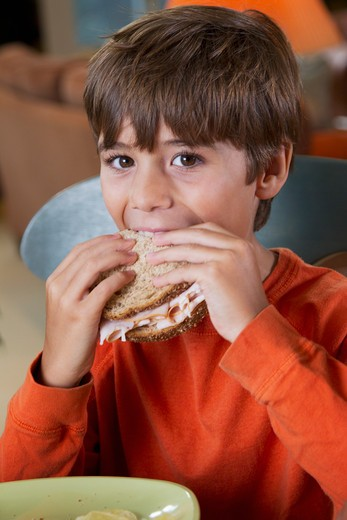 Stock Photo: 4001R-1403 Boy eating lunch