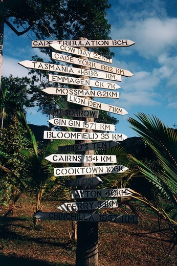 Directional signs posted to a pole surrounded by lush plants, Port Douglas, Queensland, Australia : Stock Photo