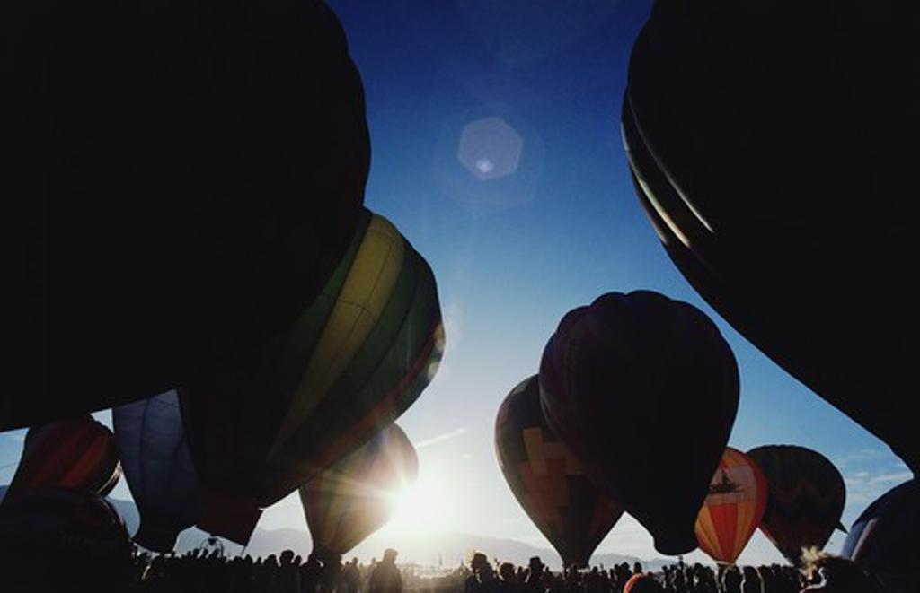 Stock Photo: 4009-698 Hot air balloons at the festival, Albuquerque International Balloon Fiesta, Albuquerque, New Mexico, USA