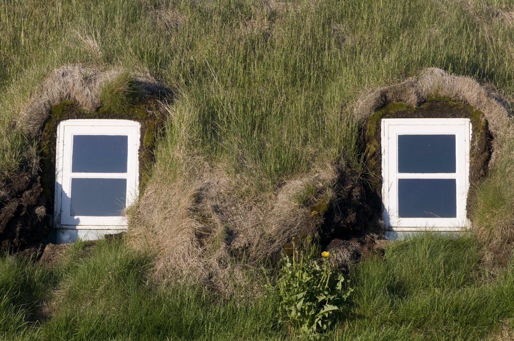 Huts in a field, Glaumbaer, Iceland : Stock Photo