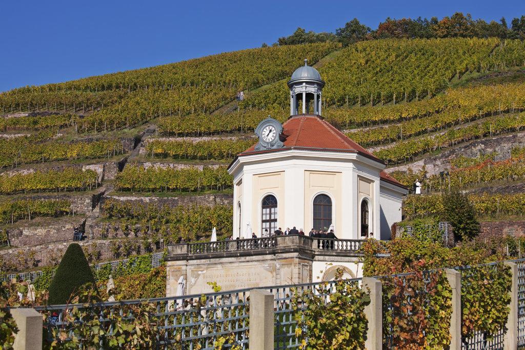 Castle in a vineyard, Wackerbarth Castle, Radebeul, Elbe Valley, Saxony, Germany : Stock Photo