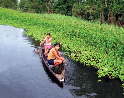 Two native girls paddle a canoe down the Amazon River in Brazil : Stock Photo