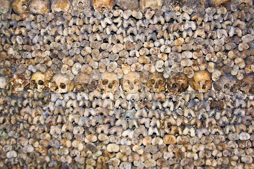Paris, France, Ile-de-France, bones and skulls in the Catacombs, the mass underground graveyard of Paris in Montparnasse : Stock Photo