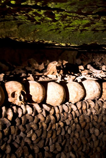 Stock Photo: 4028-2923 Paris, France, Ile-de-France, bones and skulls in the Catacombs, the mass underground graveyard of Paris in Montparnasse