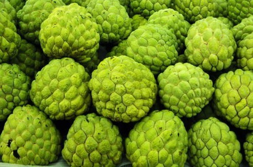 Close-up of a heap of cherimoya : Stock Photo