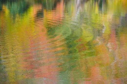 Autumnal colors reflected in pond. Takashima, Shiga Prefecture, Japan : Stock Photo