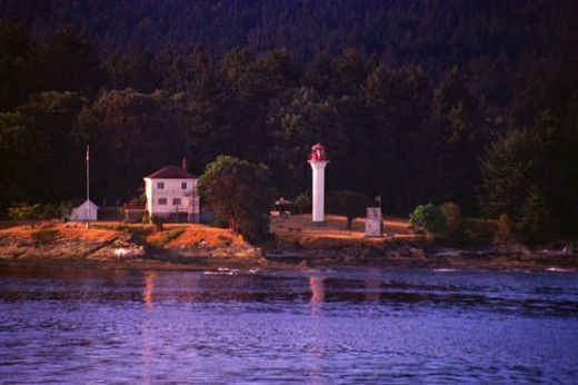 Small lighthouse with trees and hill behind : Stock Photo