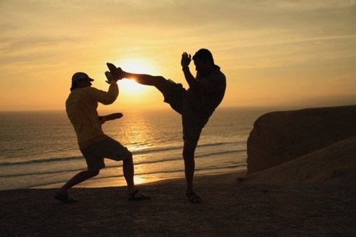 Stock Photo: 4029R-112920 Fighting by the beach