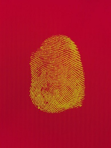 fingerprint, Composite : Stock Photo