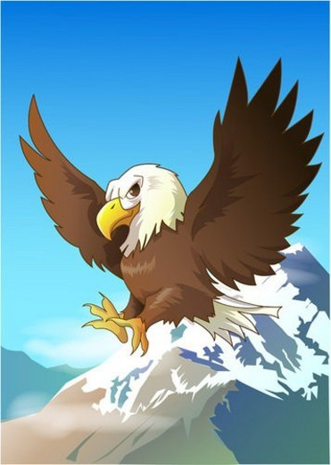 natural world, eagle, bard, animal, bladeagle, birds, zoo : Stock Photo