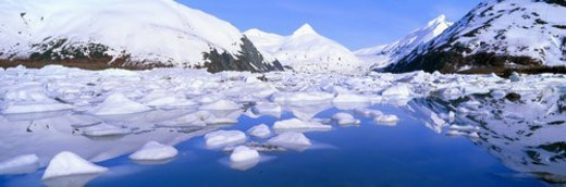 Stock Photo: 4029R-121348 Icebergs in Portage Lake and Portage Glacier