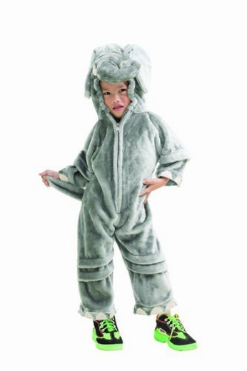 Stock Photo: 4029R-122191 Asian Ethnicity, Costume, Chinese Ethnicity, Child, 6-7 Years