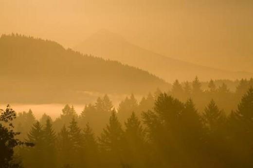 Stock Photo: 4029R-125156 Mount Hood, Oregon, USA; Silhouetted landscape at sunrise