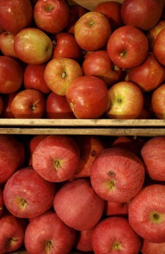 Stock Photo: 4029R-125769 Apples in boxes, close up, full frame