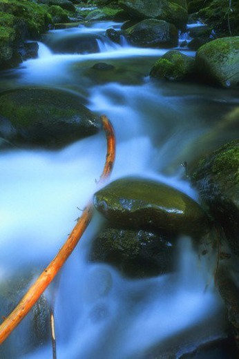 Time delay flowing river : Stock Photo