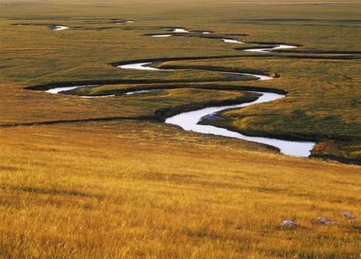 Landscape of Plain of Xilingele, Nei Mongol : Stock Photo