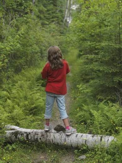 Young girl standing on log, Lake of the Woods, Ontario, Canada : Stock Photo