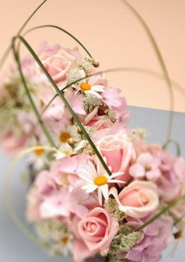 flower story, bloom, stamen, grow, nature, blossom : Stock Photo