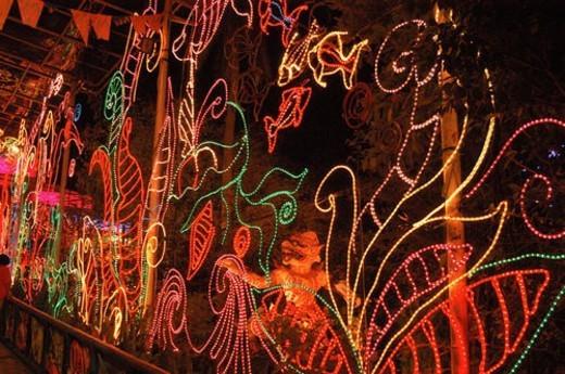 Stock Photo: 4029R-146195 city, neon, landscape, scenery, light, city scenery, night