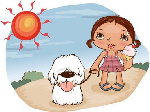 sun, icecream, summer, puppy, weather : Stock Photo